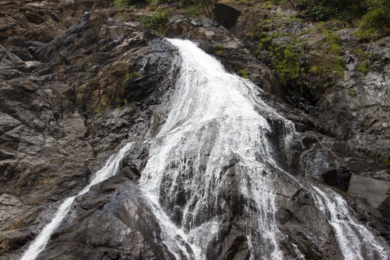 Siklawa w dżungli, piękny widok stroma skała Indiya Goa obraz stock