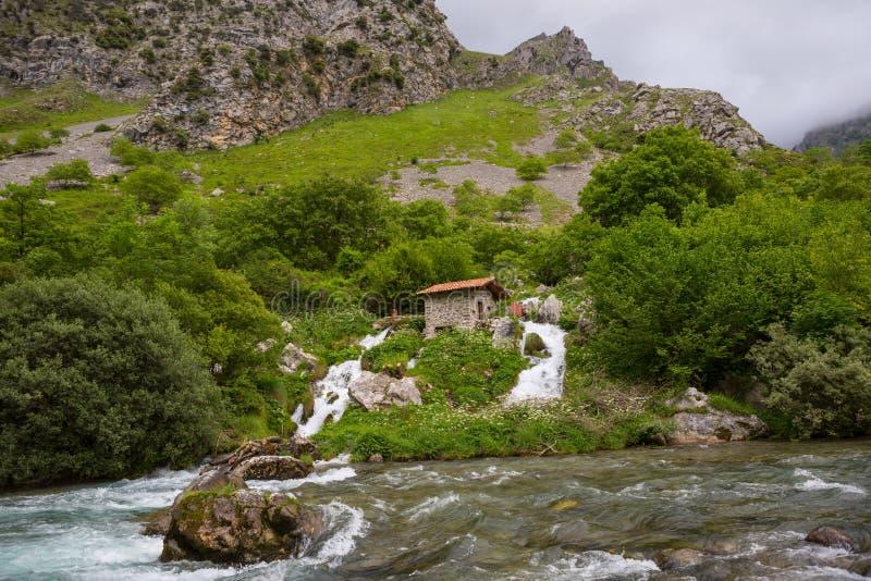 Siklawa w Dba rzekę zdjęcia royalty free