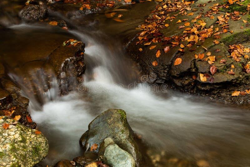 Siklawa w górach zamyka w górę jesień czasu w, Rumunia Karpacka góra obrazy royalty free