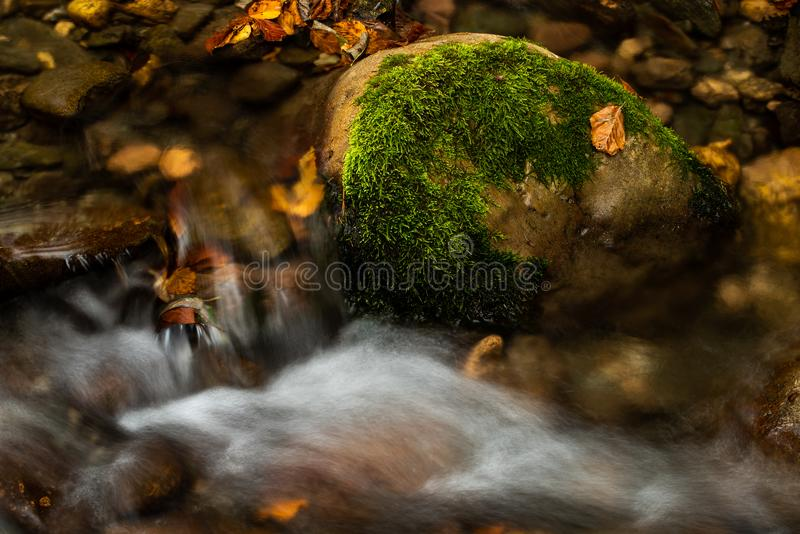 Siklawa w górach zamyka w górę jesień czasu w, Rumunia Karpacka góra zdjęcia stock
