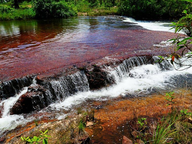 Siklawa w Jalapao, Tocantins zdjęcia stock