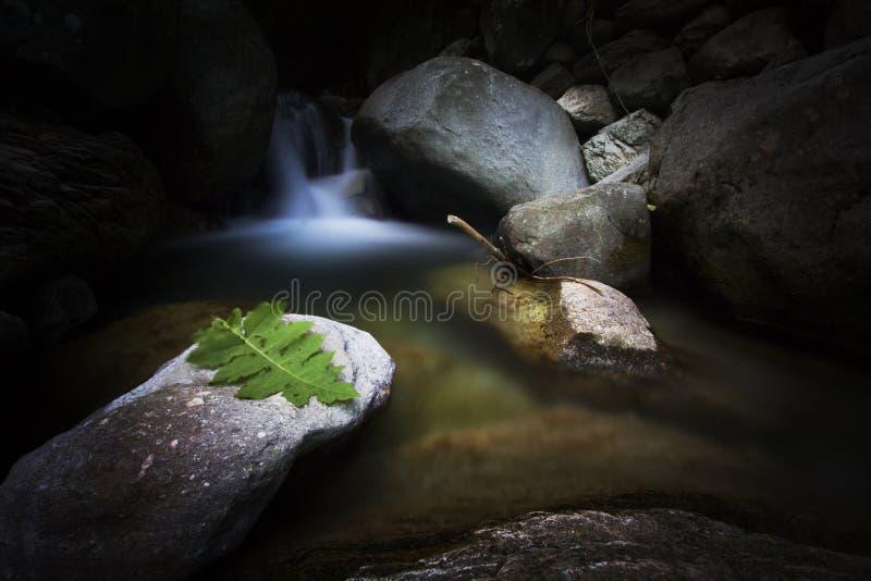 Siklawa w jeziorze fotografia stock