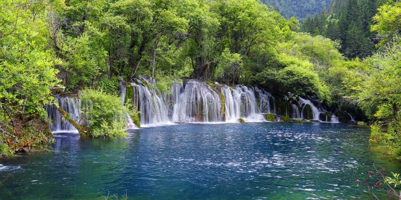 Siklawa w Jiuzhaigou parku narodowym, zdjęcie royalty free