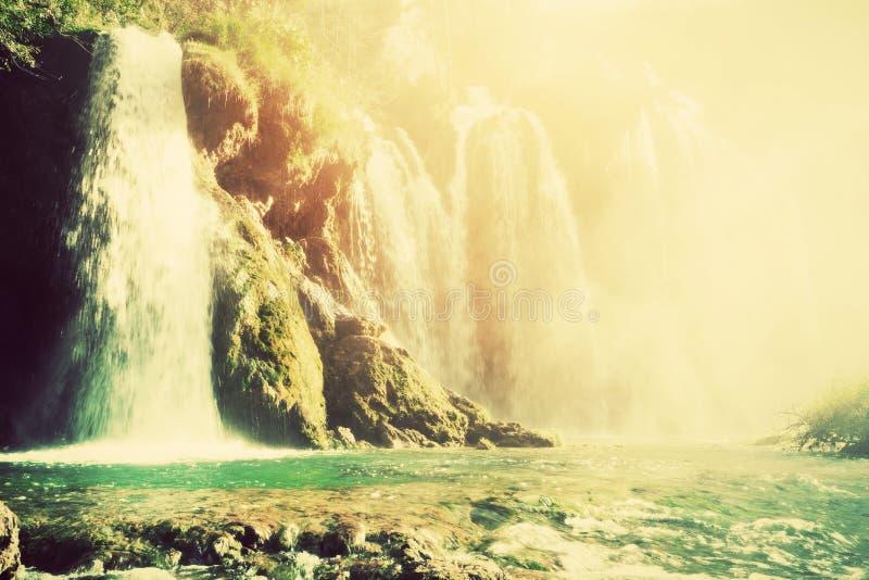 Siklawa w lasowym krysztale - jasna woda Rocznik zdjęcia stock
