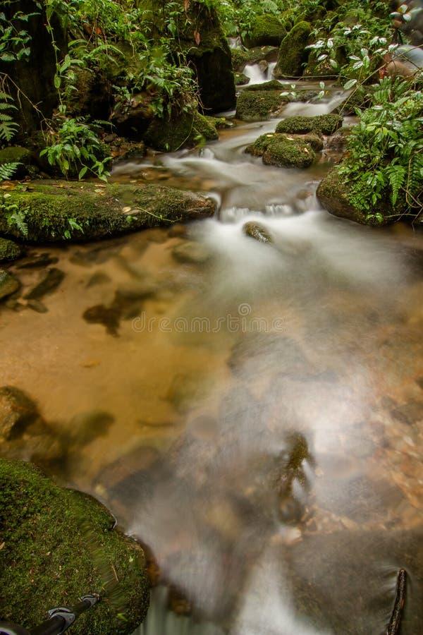 Siklawa w lasowym Thailand zdjęcie stock