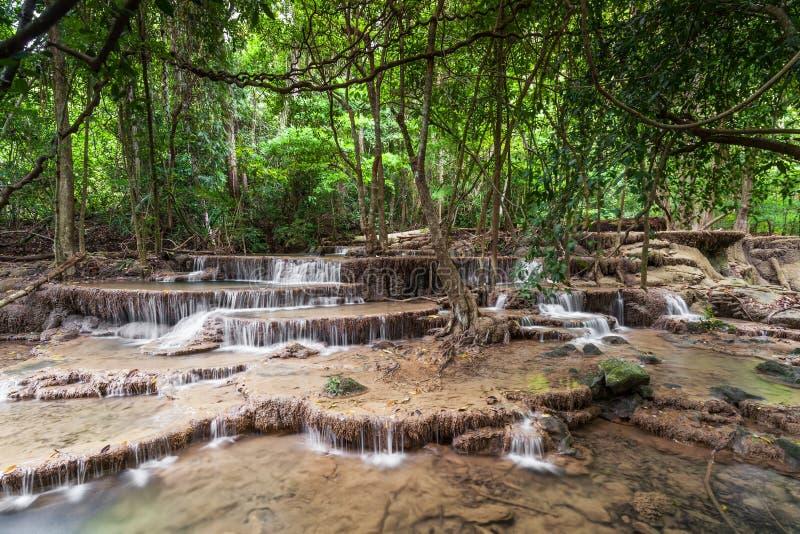 Siklawa w lesie tropikalnym obraz stock