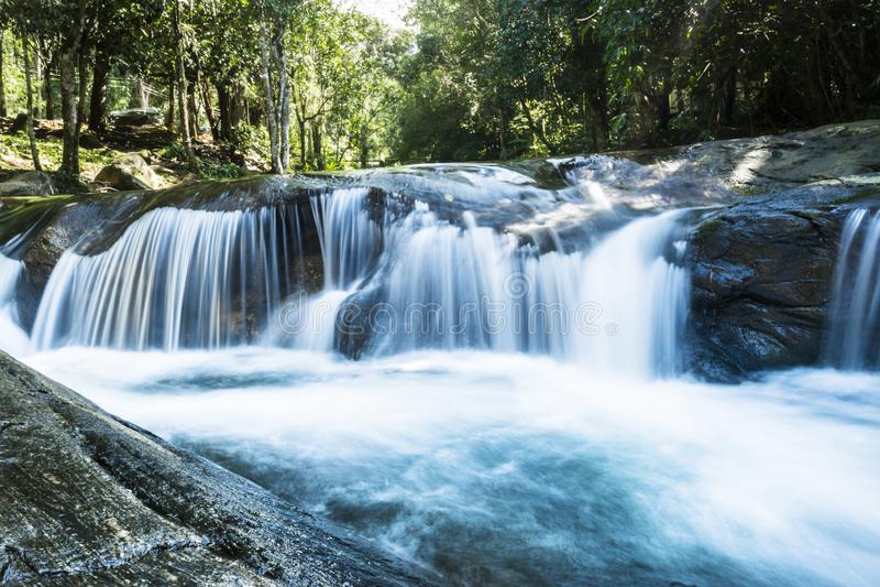 Siklawa w regionie Atlantycki las w Brazylia zdjęcia stock