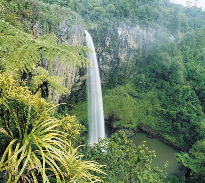 Siklawa w tropikalnego lasu deszczowego podwyższonym widoku fotografia stock