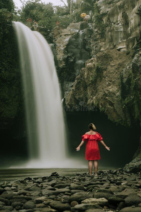 Siklawa w tropikalnym lasowym Bali, Indonezja obraz royalty free