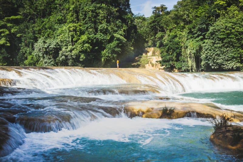 Siklawy Cascadas De Agua Azul Chiapas Meksyk fotografia stock