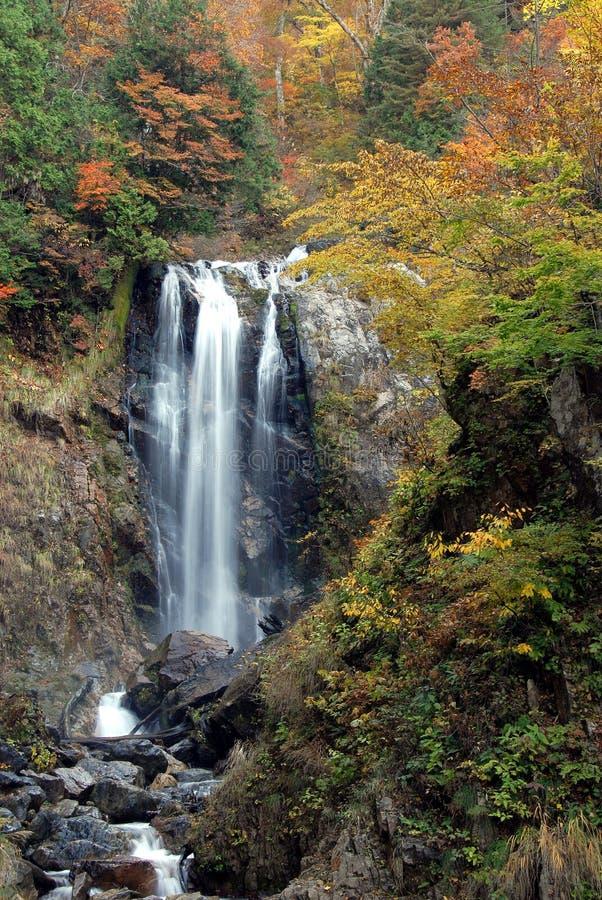 Siklawy jesieni ulistnienie zdjęcie royalty free