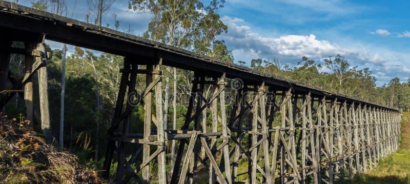 sikt över den Noojee bockbron, Gippsland, Victoria, Australien arkivfoto