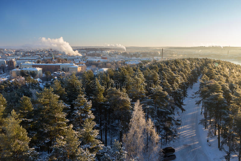 Sikt över den Tammerfors staden och snöig träd i Pyynikki royaltyfri foto