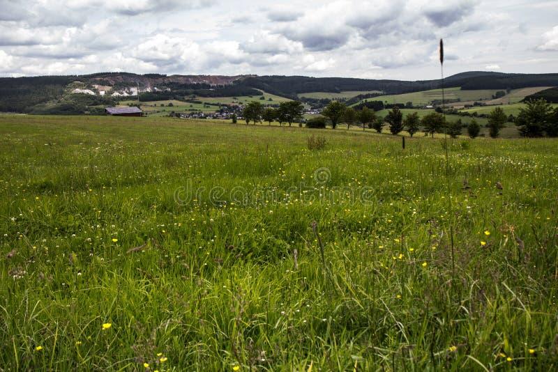 Sikt över ett fält i Tyskland royaltyfria foton