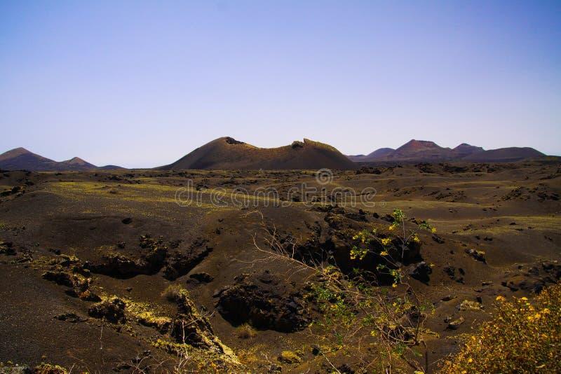 Sikt över svart lavafält med att kontrastera isoalted gula blommor på krater av vulkan - Timanfaya NP, Lanzarote royaltyfri fotografi