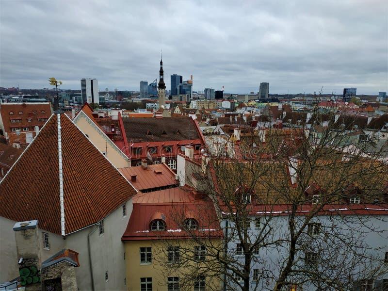 Sikt över Tallinn den gamla staden till skyskraporna arkivbilder