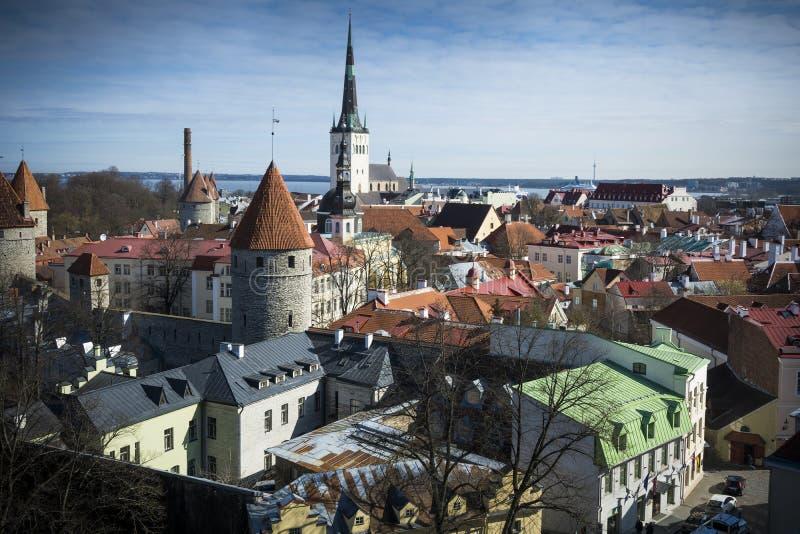 Sikt över Tallinn från hög fördelpunkt arkivfoto