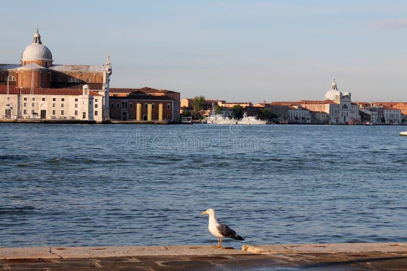 Sikt av ön av San Giorgio Maggiore i Venedig Italien med gondoler arkivbild