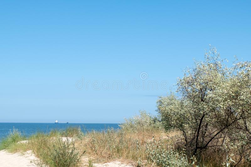 Sikt av Östersjön över en dyn arkivfoto