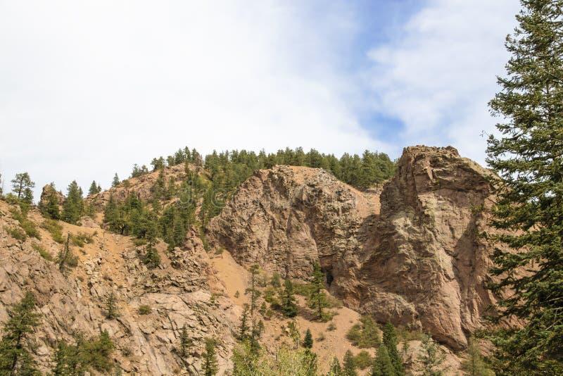 Sikt av att stå högt klippor och glidbanor med några vintergröna träd och ett stort vintergrönt träd som inramar bilden på en sid royaltyfri fotografi