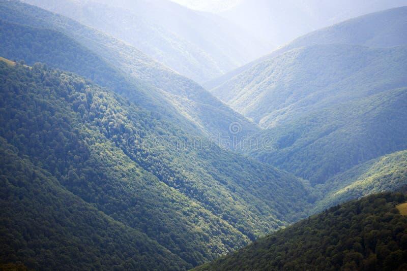 sikt av bergen i Carpathians royaltyfri foto