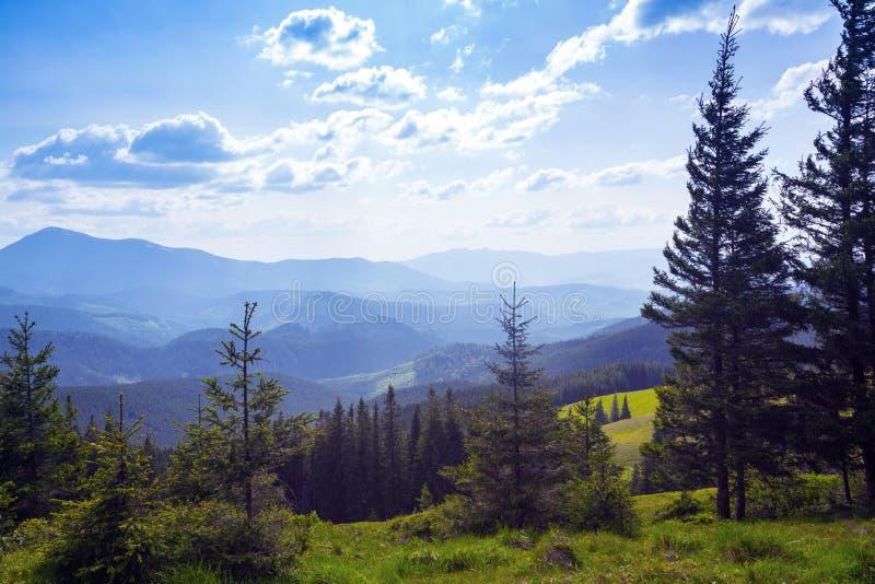 sikt av bergen i Carpathians arkivbilder