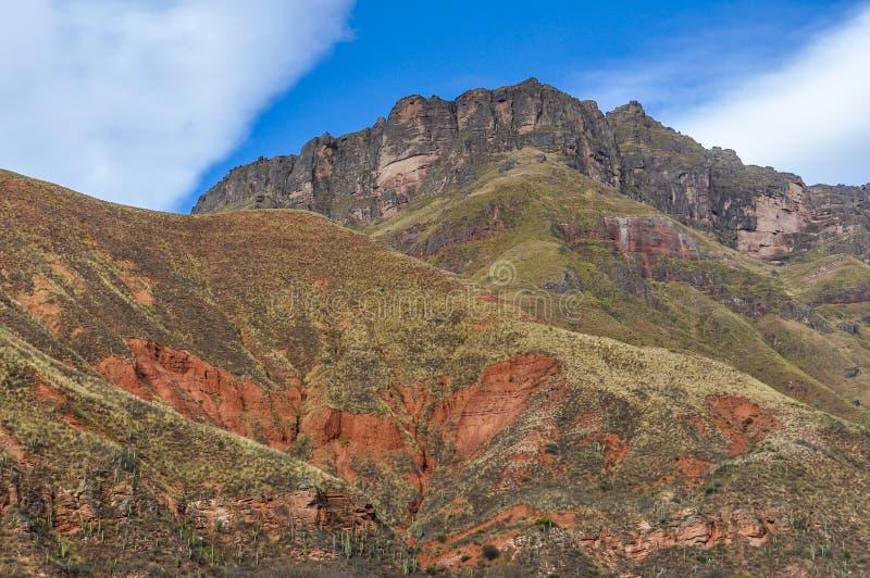 Sikt av bergen i nationalparken för los Cardones, Argentina arkivbild