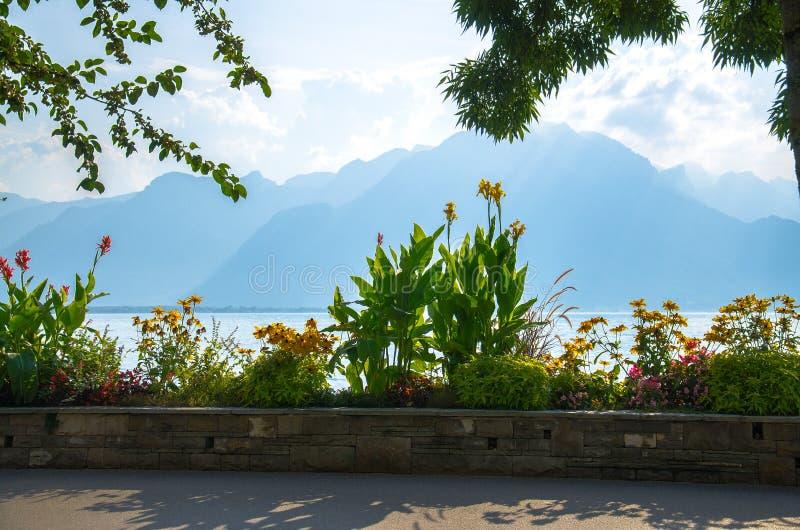 Sikt av bergfjällängar och sjön Leman i Montreux, Schweiz royaltyfri bild