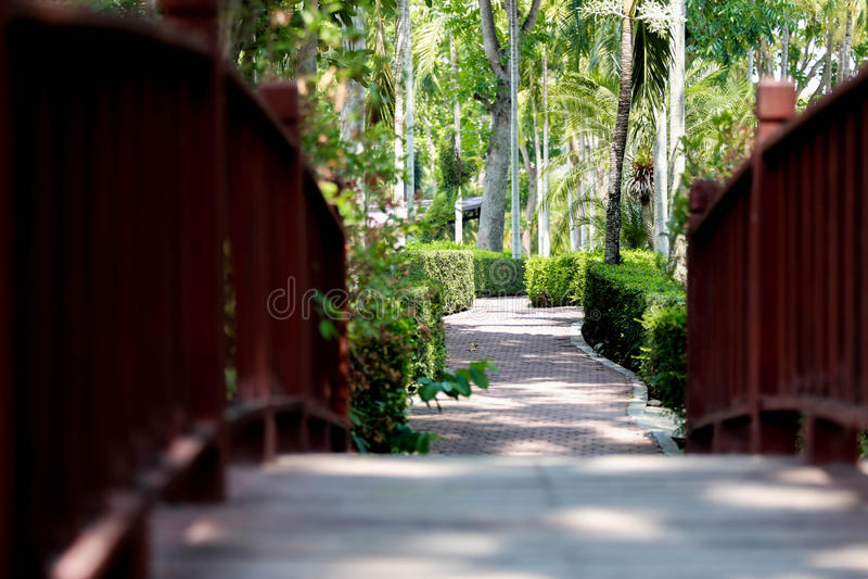 Sikt av botaniska trädgården för drottning Sirikit, Chiang Mai, Thailand royaltyfria foton