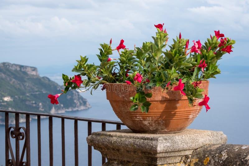 Sikt av bunken av blommor och medelhavet från terrassen av oändligheten på trädgårdarna av villan Cimbrone, Ravello, Italien royaltyfri bild