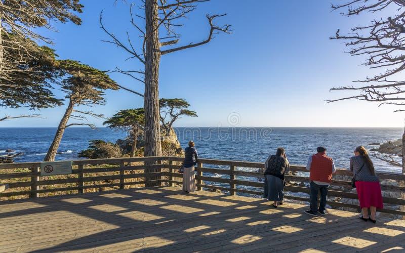 Sikt av Carmel Bay och ensamma Cypern på Pebble Beach, 17 mil drev, halvö, Monterey, Kalifornien, Förenta staterna av royaltyfri bild