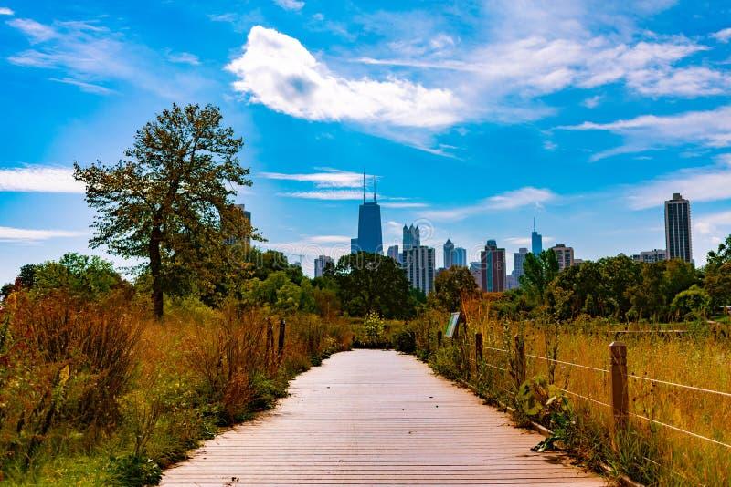 Sikt av Chicago horisont från en slinga på det södra dammet i Lincoln Park under höst arkivbilder