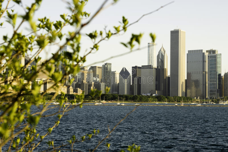 Sikt av Chicago och Lake Michigan arkivfoto