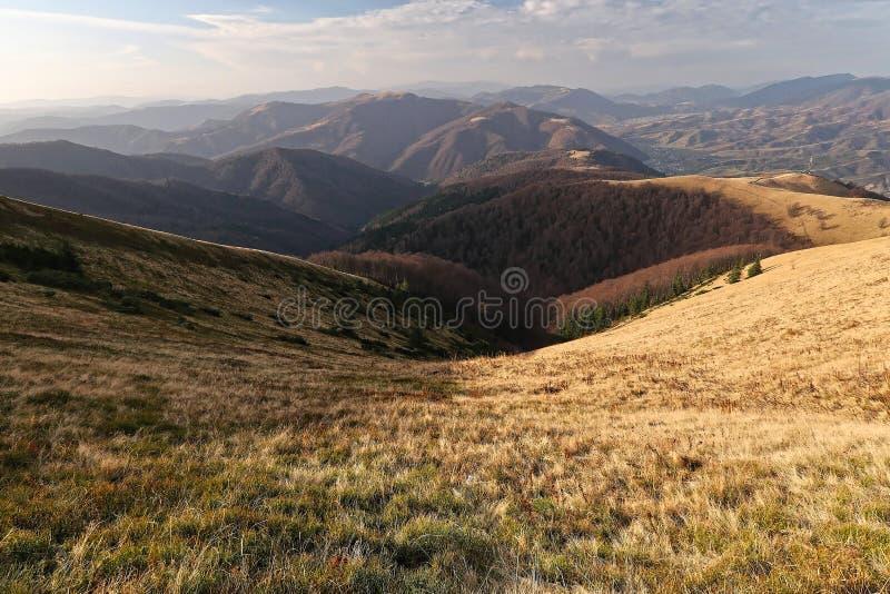 Sikt av de Carpathian bergen och de härliga skogarna Solig dag för höst Guld- höst arkivfoto