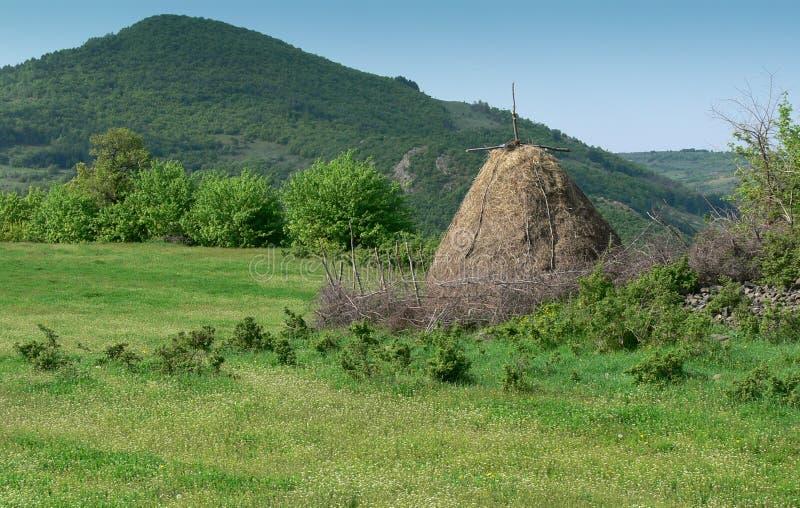 Sikt av de Rhodope bergen, Bulgarien royaltyfri foto
