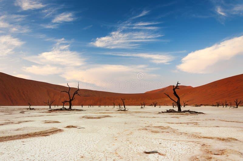 Sikt av Deadvleien i Namibia royaltyfria bilder