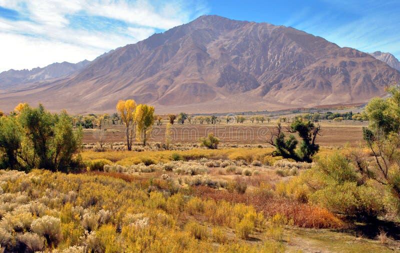 Sikt av den östliga Sierra Nevada USA Hwy 395 royaltyfri bild