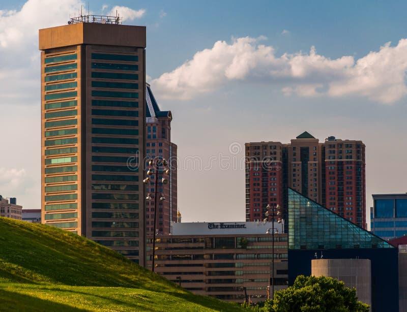 Sikt av den Baltimore horisonten från den federala kullen royaltyfri fotografi