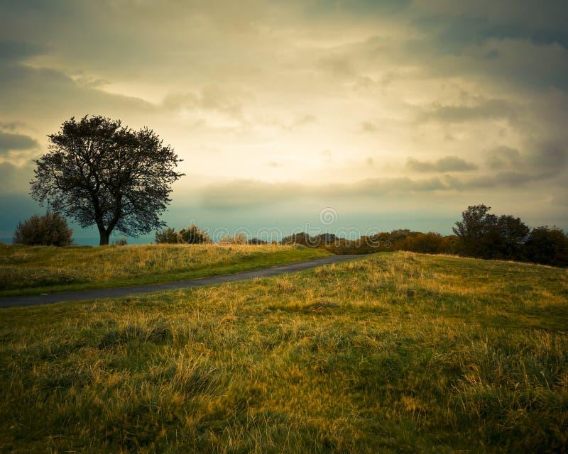 Sikt av den Calton kullen, Edinburg royaltyfri bild