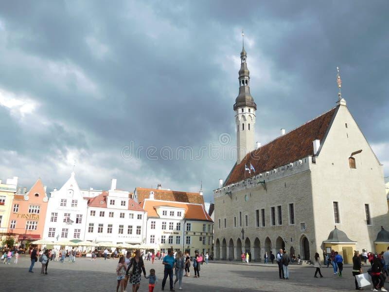 Sikt av den centrala fyrkanten i Tallinn, Estland royaltyfri bild
