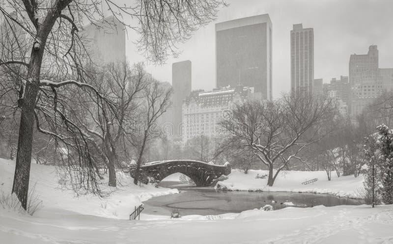 Sikt av den damm-, Gapstow bro- och Manhattan skyskrapadurinen fotografering för bildbyråer