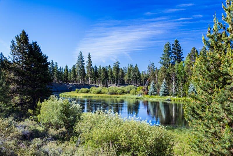 Sikt av den Deschutes floden Sunriver Oregon arkivbilder