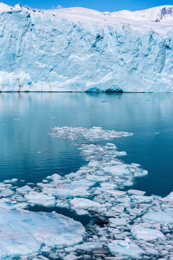 Sikt av den enorma glaciären och istappar i vattnet i Patagonia fotografering för bildbyråer
