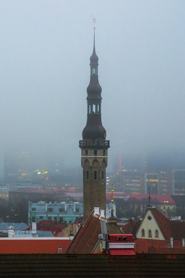 Sikt av den gamla staden i dimmigt väder Stadshustornspira Toompea område estonia tallinn royaltyfria bilder