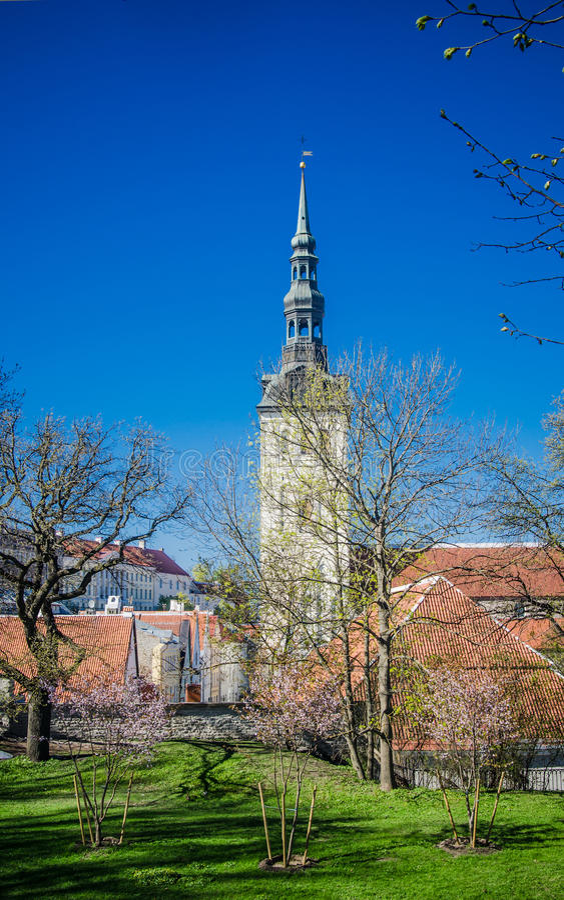 Sikt av den gamla Tallinn härliga vårdagen royaltyfri bild