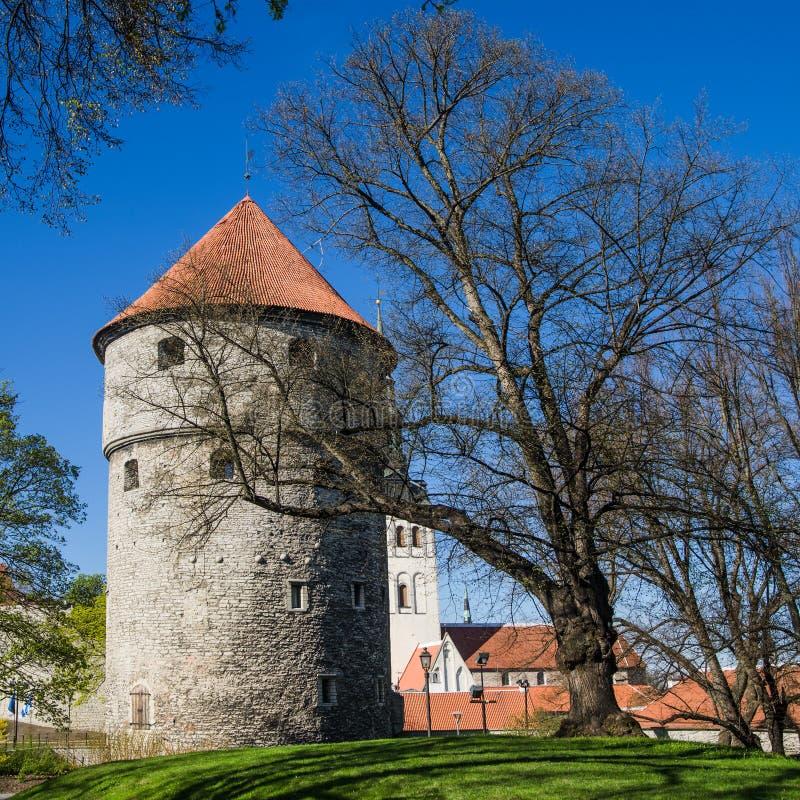Sikt av den gamla Tallinn härliga vårdagen arkivfoton