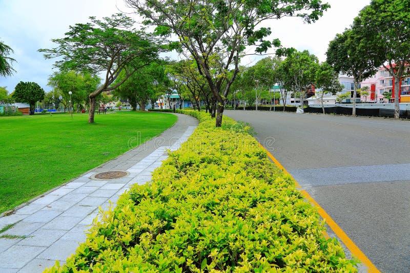 Sikt av den härliga gatan med gröna träd och grön gräsmatta Hulhumale ö, härliga gränsmärkebakgrunder royaltyfri foto