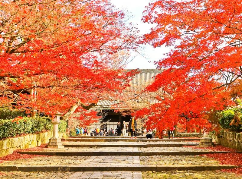 Sikt av den japanska templet i höst i Kyoto, Japan royaltyfri fotografi