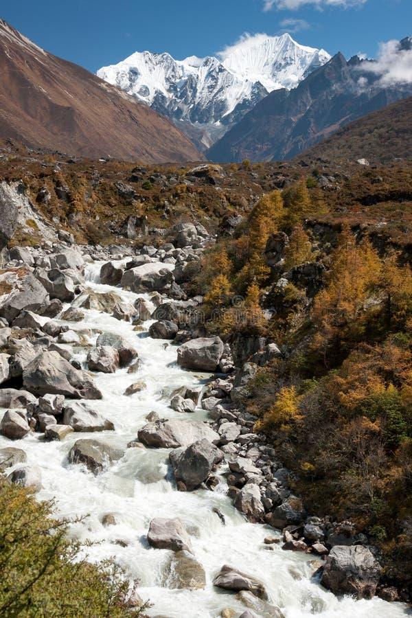 Sikt av den Langtang dalen, Langtang nationalpark, Rasuwa Dsitrict, Nepal royaltyfri fotografi