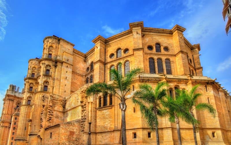 Sikt av den Malaga domkyrkan, Andalusia, Spanien royaltyfri foto